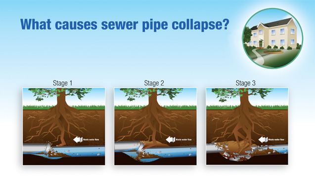 Preventing tree root damage to sewer lines